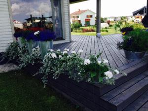 Roheline Hoov OÜ - maastikuarhitektuur, väliruumi loomine, planeerimine